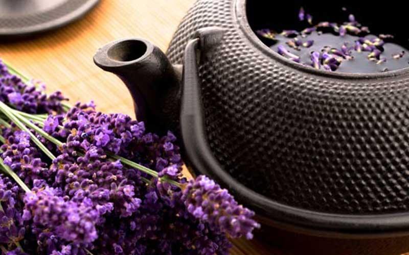 lavender improve sleep quality